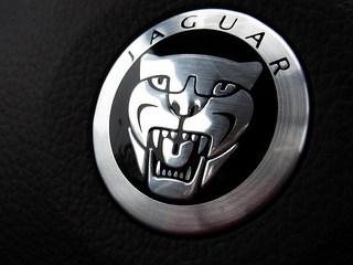 Jaguar_Gaoo.jpg